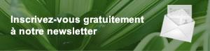 newsletter plantes phasmes phyllium